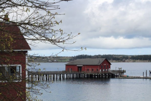 whidbey4