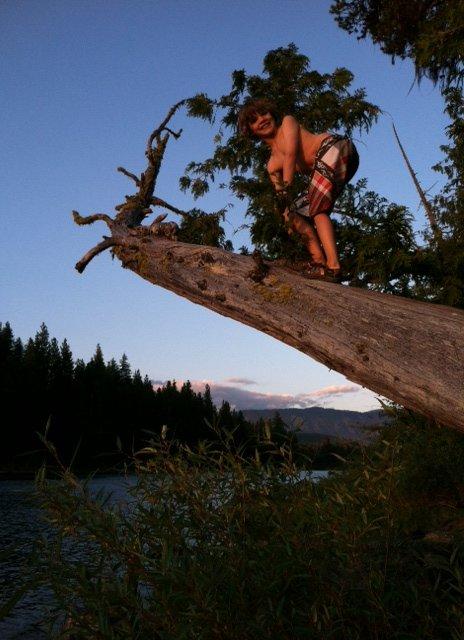 Caleb climbing a very cool sideways tree they found near the lake.
