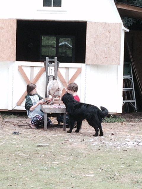 kids shaving