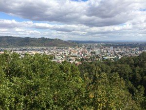 The view of Temuco from a park on a hill