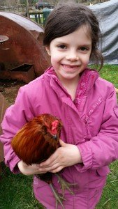 "Audrey and her banty rooster named Roger - many a day at least one of us can be heard saying ""Oh Roger..."" as he crows relentlessly just outside the house"